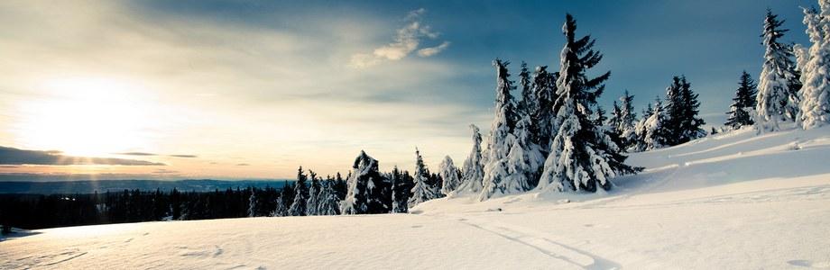 Die besten iPhone / iPad Winter Wallpaper!
