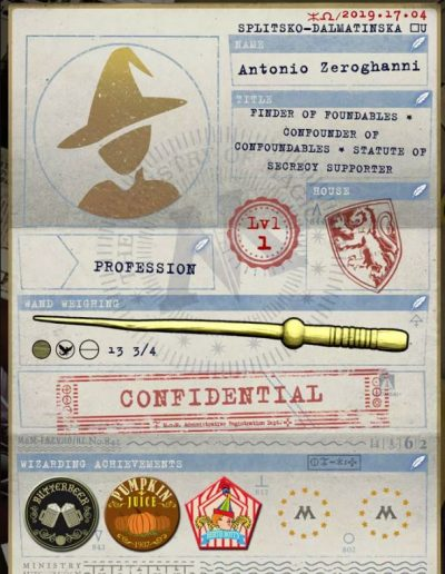 Harry Potter Wizards Unite Ministeriums ID