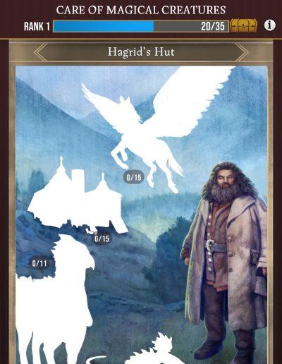 Harry Potter Wizards Unite Registry