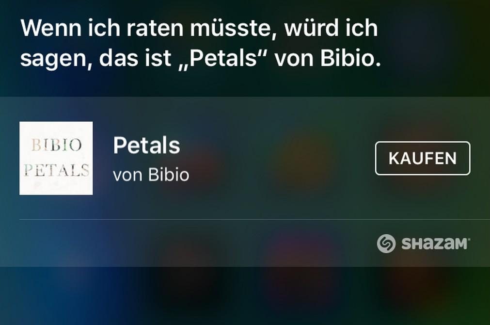 Siri Song erkennen