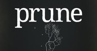 Prune iOS Review