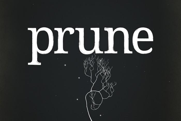 Review: Prune – Kunstvolle Beschneidungen für Rätselfreunde