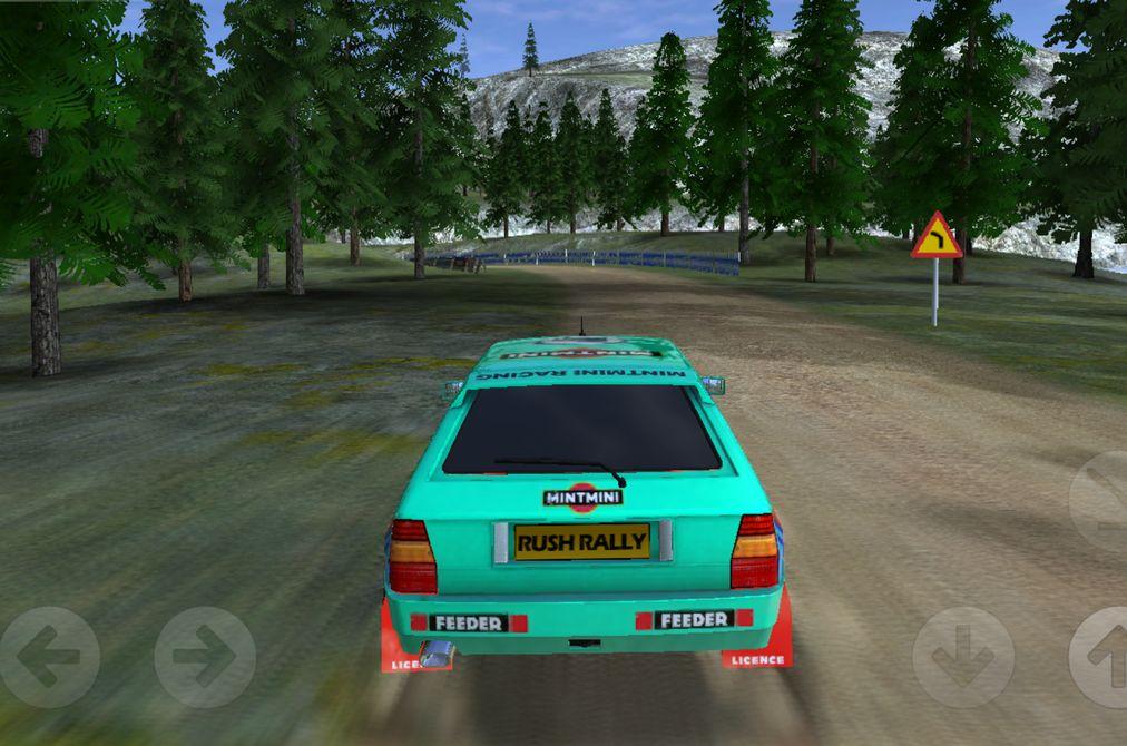 Review: Rush Rally 2 – Virtueller Dreck an der Windschutzscheibe