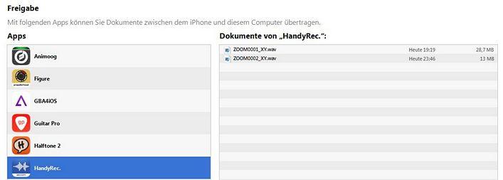 Zoom iQ6 iTunes
